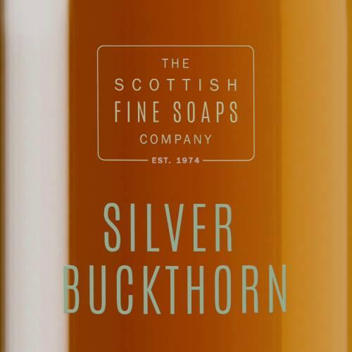 Silver Buckthorn